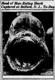 """The """"man-eater"""" (Courtesy Library of Congress)"""