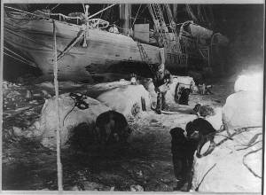 """Endurance in the background. The dogs housed in """"dogloos"""" are fed by expedition members (Credit: Library of Congress)"""
